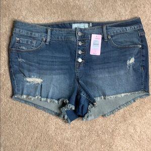 Torrid cut off indie shorts